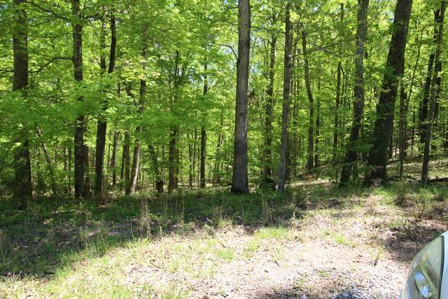 00 Old State Rd, Cloudland, GA 30731 (MLS #1316092) :: Keller Williams Realty | Barry and Diane Evans - The Evans Group