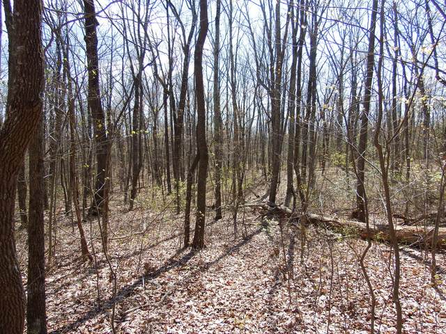 0 Forest Knoll Rd, Dunlap, TN 37327 (MLS #1316108) :: Chattanooga Property Shop