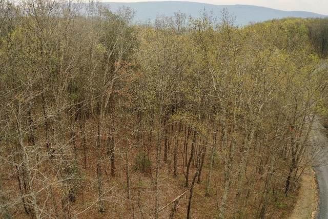 545 Wilderness Way, Dunlap, TN 37327 (MLS #1316112) :: The Robinson Team