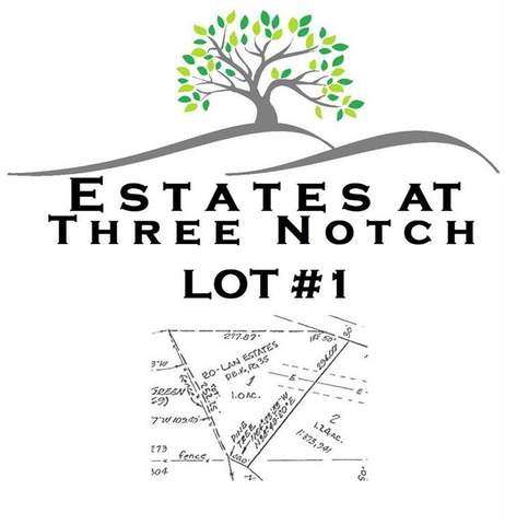 7125 Three Notch Rd Lot 1, Ringgold, GA 30736 (MLS #1316683) :: Keller Williams Greater Downtown Realty | Barry and Diane Evans - The Evans Group