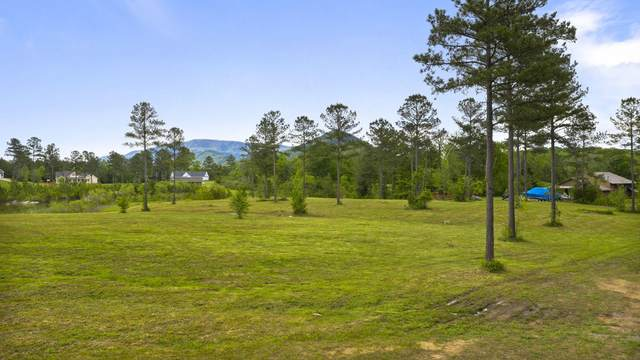 121 Quail Ln #41, Ocoee, TN 37361 (MLS #1317159) :: Chattanooga Property Shop