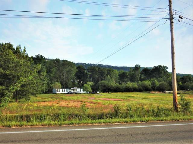 3215 Main St, Jasper, TN 37347 (MLS #1318043) :: Chattanooga Property Shop