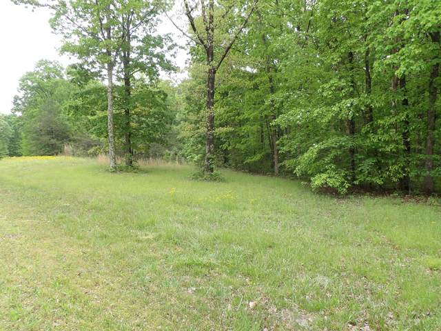 00 E Bluff Rd #92, Pikeville, TN 37367 (MLS #1318106) :: The Robinson Team