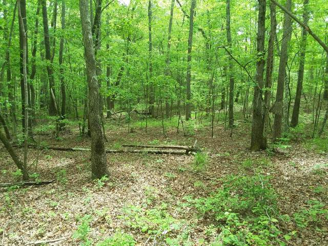 024 Whiteoak Swamp Rd #24, Dunlap, TN 37372 (MLS #1318190) :: The Robinson Team