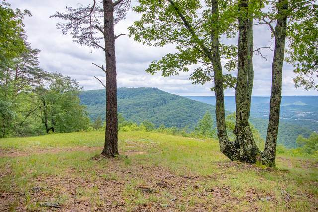 0 Cascades Dr #21, Rising Fawn, GA 30738 (MLS #1318272) :: Keller Williams Realty | Barry and Diane Evans - The Evans Group