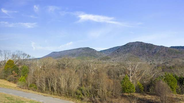 176 & 192 Waterstone Drive Dr, Benton, TN 37307 (MLS #1318290) :: Keller Williams Realty | Barry and Diane Evans - The Evans Group