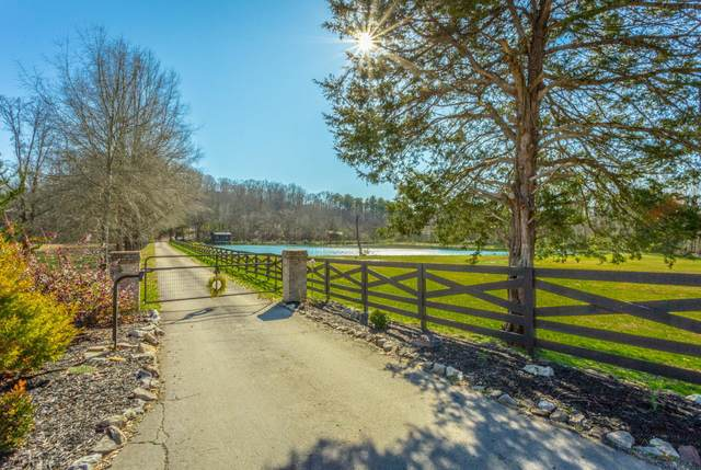 6004 Tallant Rd, Mcdonald, TN 37353 (MLS #1318369) :: Denise Murphy with Keller Williams Realty