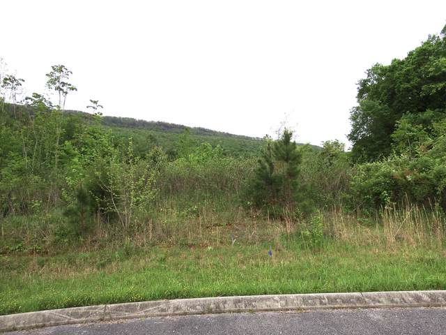 8 Tanner Trl, Whitwell, TN 37397 (MLS #1318381) :: Chattanooga Property Shop