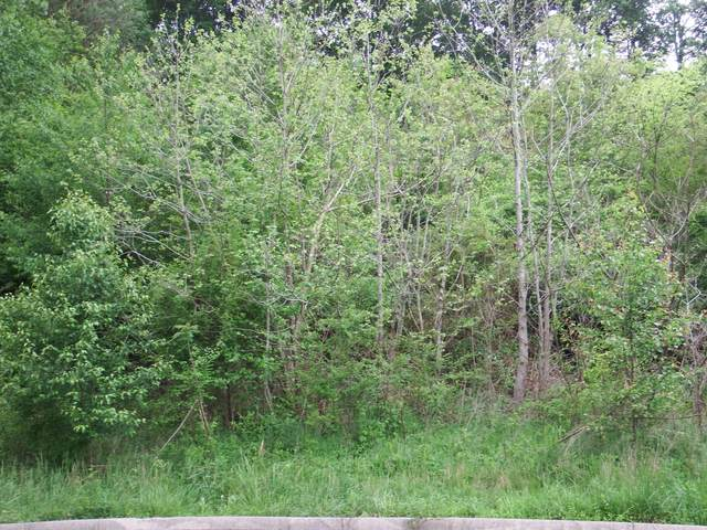1 Tanner Trl, Whitwell, TN 37397 (MLS #1318392) :: Chattanooga Property Shop