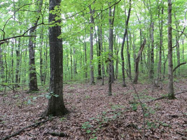 04 Valley View Rd #338, Pikeville, TN 37367 (MLS #1318442) :: Chattanooga Property Shop
