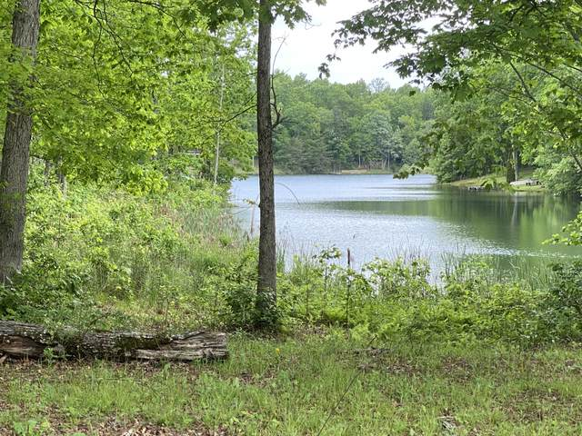 Lot 6 Eagle Nest Rd #6, Graysville, TN 37338 (MLS #1318534) :: The Robinson Team