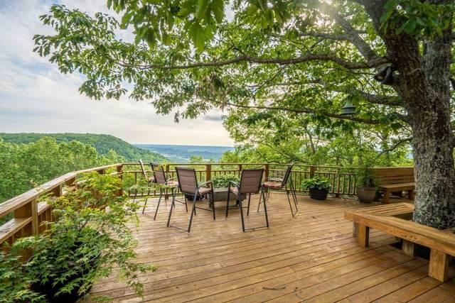 16233 Scenic Drive, Mentone, AL 35984 (MLS #1318565) :: Chattanooga Property Shop