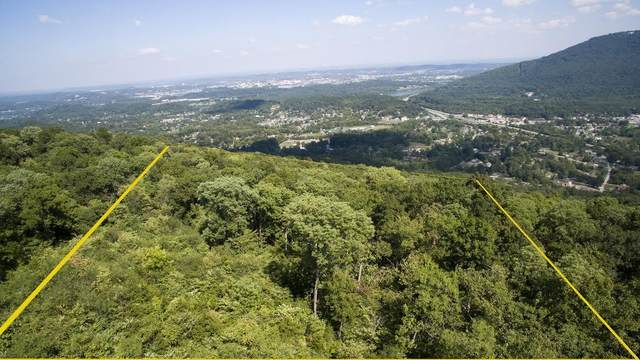 0 Raccoon Mtn Rd #13, Chattanooga, TN 37419 (MLS #1318582) :: Austin Sizemore Team