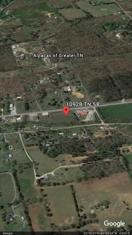 10928 Highway 58, Georgetown, TN 37336 (MLS #1318636) :: Denise Murphy with Keller Williams Realty