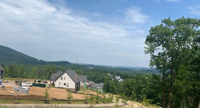 1105 River Gorge Dr #60, Chattanooga, TN 37419 (MLS #1318811) :: The Robinson Team