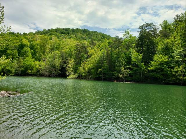 0b Lakeway Ln, New Tazewell, TN 37825 (MLS #1318868) :: Chattanooga Property Shop