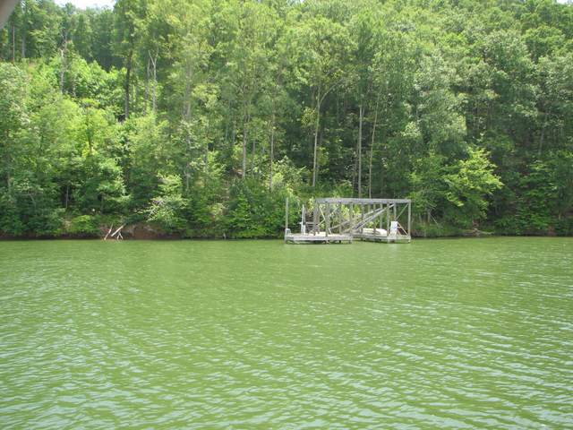 Lot 744&74 Omega Dr 744 & 745, Spring City, TN 37381 (MLS #1319262) :: Keller Williams Realty | Barry and Diane Evans - The Evans Group