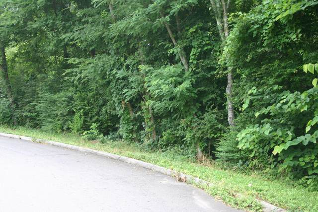 348 NE Quail Run Tr, Cleveland, TN 37312 (MLS #1319555) :: Smith Property Partners