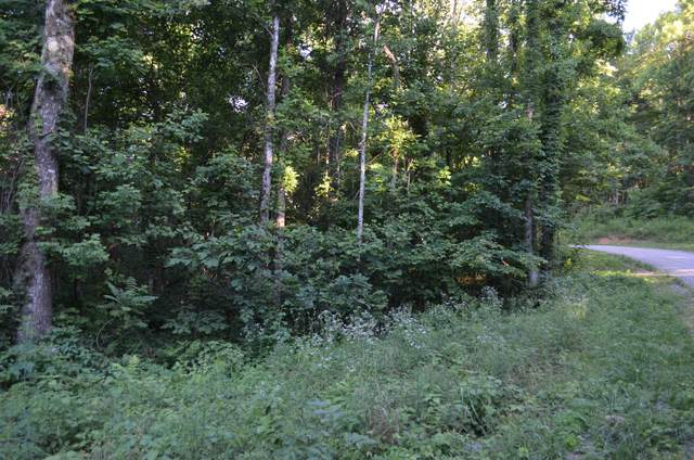 Tbd Overlook Tr, Spring City, TN 37381 (MLS #1319938) :: Chattanooga Property Shop