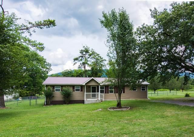 371 Oak Ave, Trenton, GA 30752 (MLS #1319970) :: Chattanooga Property Shop