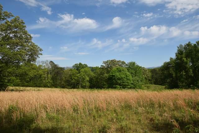 29 Acres Horns Creek Rd, Ocoee, TN 37361 (MLS #1320017) :: Keller Williams Realty | Barry and Diane Evans - The Evans Group