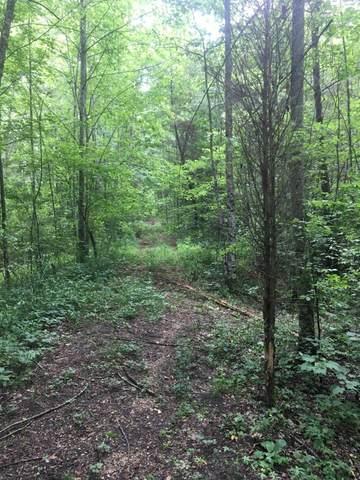 201 Robin Hood Tr, Lookout Mountain, TN 37350 (MLS #1320417) :: Chattanooga Property Shop