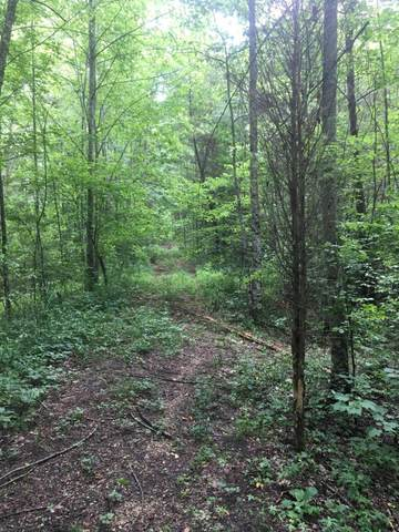 0 Phillips Rd, Lookout Mountain, GA 30750 (MLS #1320436) :: The Robinson Team