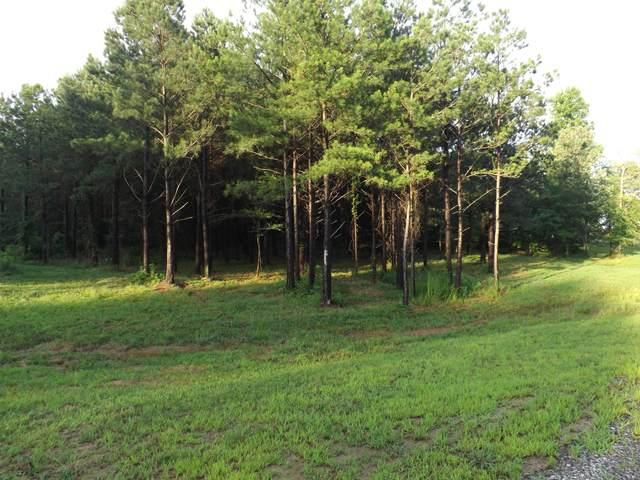 0 Lookout View Dr #163, Jasper, TN 37347 (MLS #1320446) :: Keller Williams Realty | Barry and Diane Evans - The Evans Group