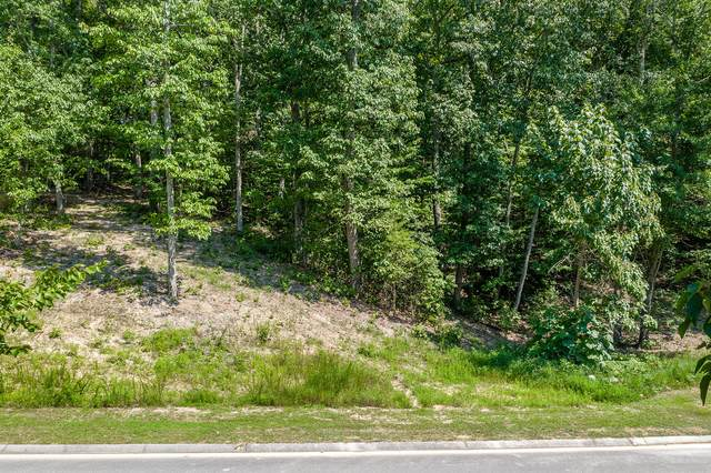 10077 Caseview Dr Lot 15, Harrison, TN 37341 (MLS #1321553) :: Austin Sizemore Team