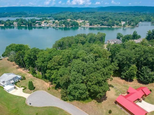 Lot 24 Spring Harbor Dr 24 & 24A, Spring City, TN 37381 (MLS #1321657) :: Austin Sizemore Team