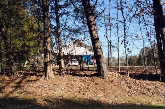 1729 Highway 163, Calhoun, TN 37309 (MLS #1321658) :: The Hollis Group