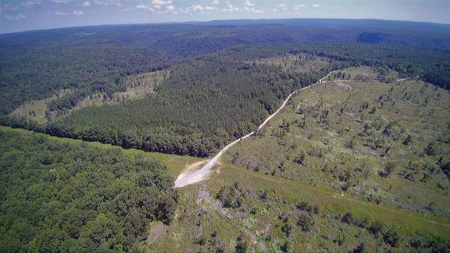 0 Lickpoint Rd, Sequatchie, TN 37374 (MLS #1321666) :: The Hollis Group