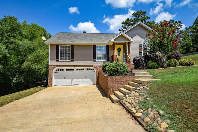 6546 Olde Ferry, Harrison, TN 37341 (MLS #1321812) :: The Mark Hite Team