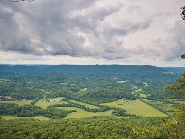 83 Brow Wood Ln #20, Lookout Mountain, GA 30750 (MLS #1321844) :: Chattanooga Property Shop