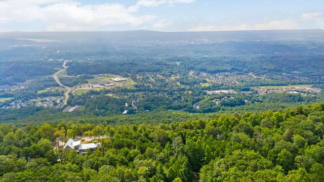 0 N Palisades Dr, Signal Mountain, TN 37377 (MLS #1321895) :: Chattanooga Property Shop
