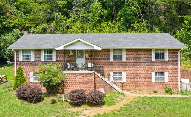 417 Reads Lake Rd, Chattanooga, TN 37415 (MLS #1322189) :: Austin Sizemore Team