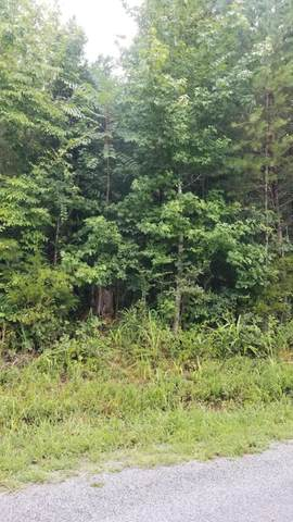 20.31 Ac Stump Hollow Rd, Spring City, TN 37381 (MLS #1322195) :: Keller Williams Realty   Barry and Diane Evans - The Evans Group
