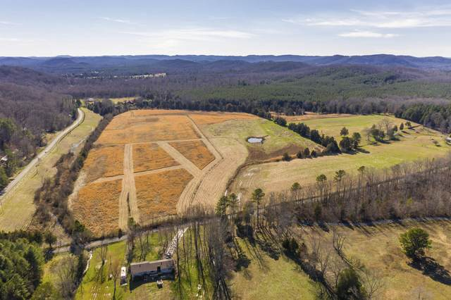 Tract # 2 No Pone & Francisco, Georgetown, TN 37336 (MLS #1322382) :: Keller Williams Realty | Barry and Diane Evans - The Evans Group