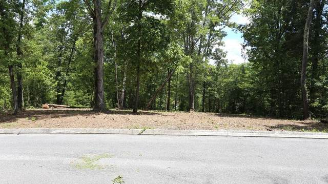 Lot 15 Waterview Dr #15, Spring City, TN 37381 (MLS #1322397) :: Austin Sizemore Team
