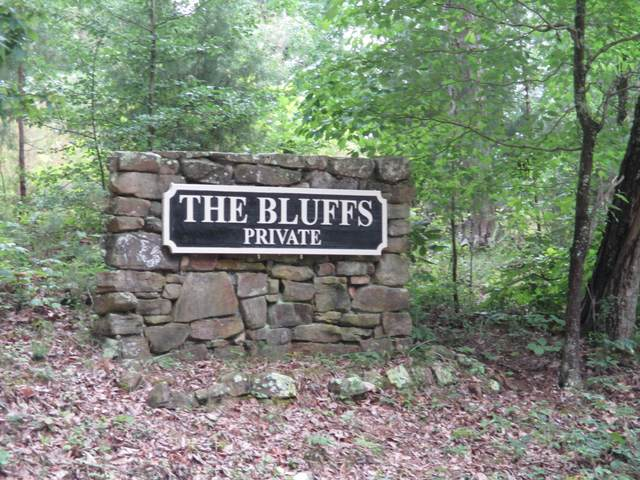 0 S Bluffs Rd Lots #32/33, South Pittsburg, TN 37380 (MLS #1322444) :: The Chattanooga's Finest | The Group Real Estate Brokerage