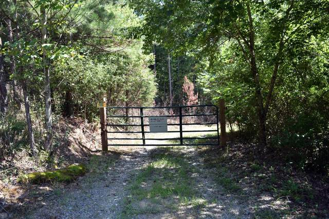 450 Hickory Rd Lot 1 & 2, Spring City, TN 37381 (MLS #1322924) :: Keller Williams Realty | Barry and Diane Evans - The Evans Group
