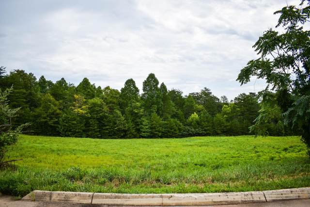 Lot 3 Shiners Bluff Dr, Madisonville, TN 37354 (MLS #1323139) :: Chattanooga Property Shop