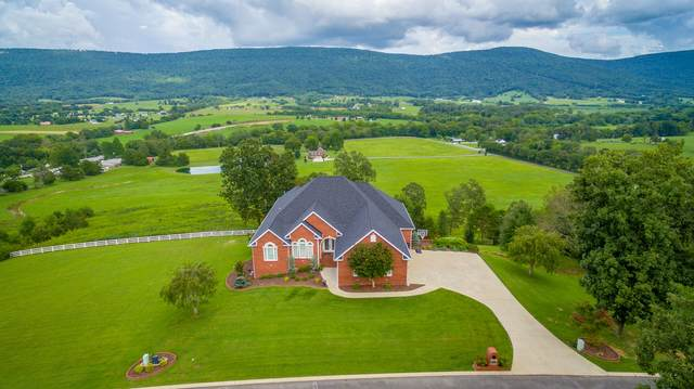 205 Sky High Dr, Dunlap, TN 37327 (MLS #1323506) :: Keller Williams Realty | Barry and Diane Evans - The Evans Group