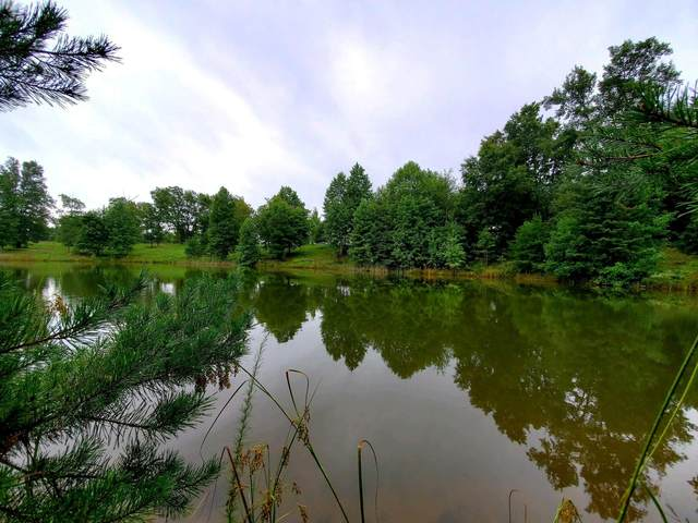 515 Wilderness Way, Dunlap, TN 37327 (MLS #1323537) :: 7 Bridges Group