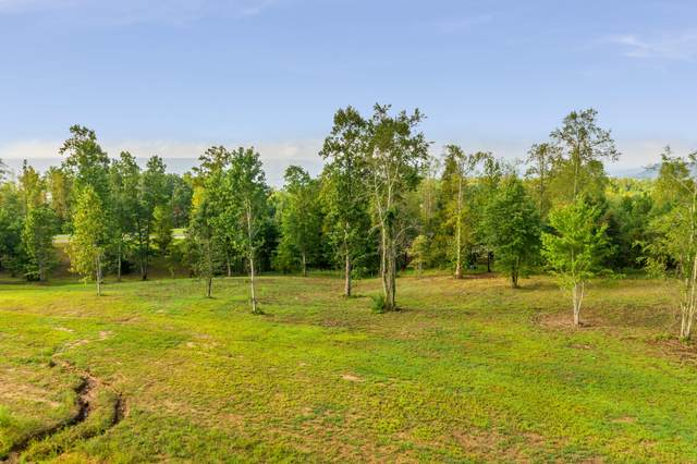 0 River Bluffs Dr Rb146, Jasper, TN 37347 (MLS #1324104) :: Austin Sizemore Team