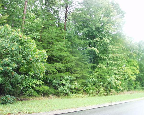 47 Big Cedar Dr, Dunlap, TN 37327 (MLS #1324451) :: Keller Williams Realty | Barry and Diane Evans - The Evans Group