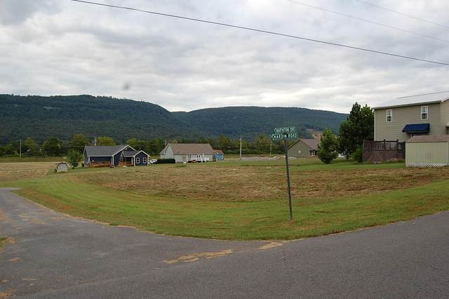 38 Hearthstone Dr #38, Dunlap, TN 37327 (MLS #1324543) :: The Mark Hite Team
