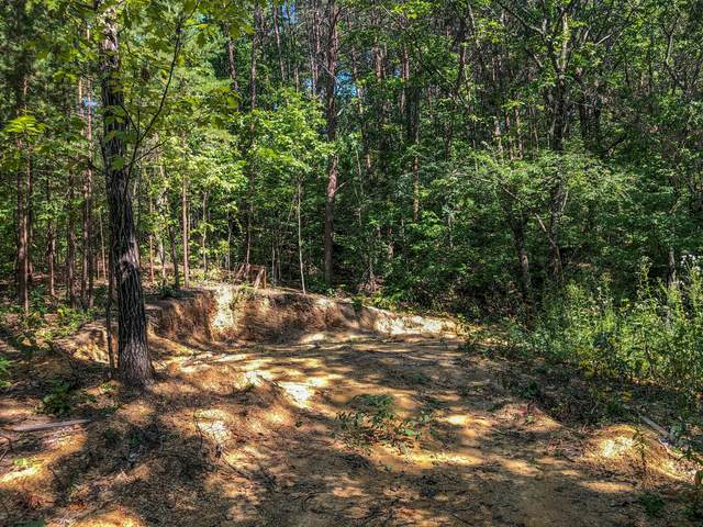 63 Alexis Drive, Rossville, GA 30741 (MLS #1324721) :: The Weathers Team