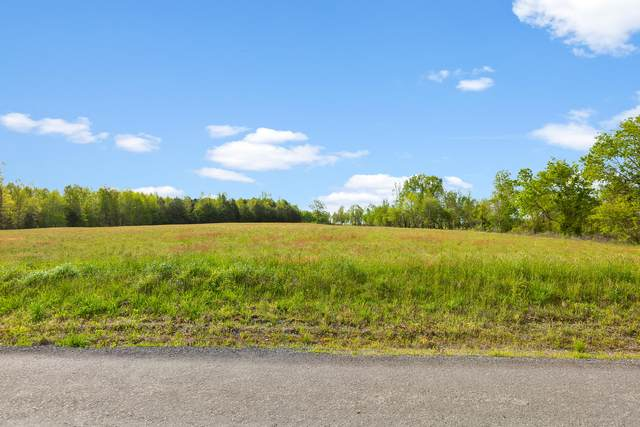 0 Co Rd 241, Henagar, AL 35978 (MLS #1324993) :: Austin Sizemore Team