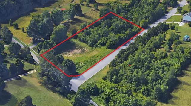 Lot 1 Falcons View Dr, Ringgold, GA 30736 (MLS #1325689) :: Denise Murphy with Keller Williams Realty